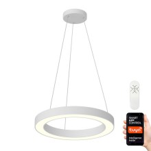 Immax NEO - Suspension dimmable LED avec fil PASTEL LED/52W/230V 60 cm blanc