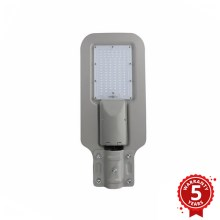 LED Straatlantaarn LED/100W/230V IP65