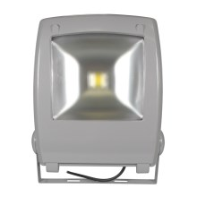 Projecteur LED FLOOD FE-N LED/50W/230V IP65